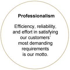 Professionalism 1